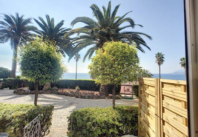 Appartement à Cannes - 264L GUN - RDJ emplacement idéal